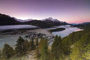 Pink sky at sunrise and mist on the lake and alpine village of Sils, Canton of Graubunden, Engadine, Switzerland, Europe