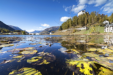 Autumn leaves in Lake Tarasp frame the old castle, Inn district, Canton of Graubunden, Engadine, Switzerland, Europe