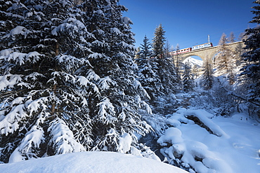 Rhaetian Railway on the Chapella Viadukt surrounded by snowy woods, Canton of Graubunden, Engadine, Switzerland, Europe