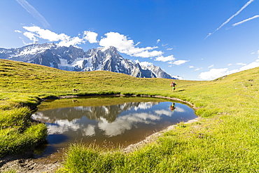 Hiker with dog admires the peaks of Mont De La Saxe reflected in water, Courmayeur, Aosta Valley, Italy, Europe