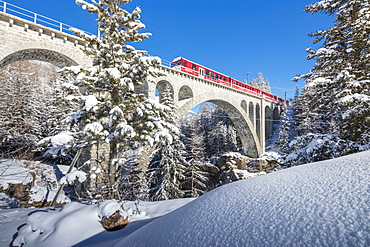 The red train on viaduct surrounded by snowy woods, Cinuos-Chel, Canton of Graubunden, Engadine, Switzerland, Europe
