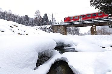The Bernina Express train in the snowy landscape of Morteratsch, Engadine, Canton of Graubunden, Switzerland, Europe
