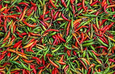 Seafood chili are exposed in the streets of Darjeeling, this drug assim with other spices is produced in India and exported, India, Asia