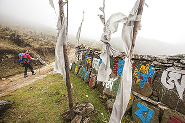 Gateway to Nepal with flags and Buddhist inscriptions near the village of Tumling, Nepal, Asia