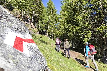 Hikers on path called Sentiero del Carbonaio, San Romerio Alp, Brusio, Poschiavo Valley, Canton of Graubunden, Switzerland, Europe