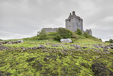 Dunguaire Castle, Kinvara, Galway, Connacht, Republic of Ireland, Europe