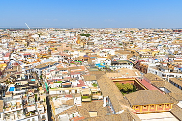 Roofs and typical buildings of the city from the bell tower of Giralda, icon of Seville, Andalusia, Spain, Europe