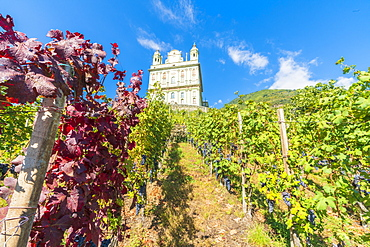 Sanctuary Santa Casa di Loreto surrounded by vineyards, Tresivio, Sondrio province, Valtellina, Lombardy, Italy, Europe