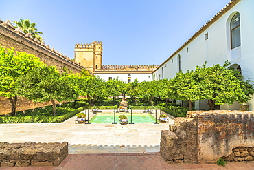 Orange trees and pool in the ancient courtyard Patio Morisco, Alcazar de los Reyes Cristianos, Cordoba, UNESCO World Heritage Site, Andalusia, Spain, Europe