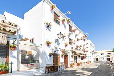 Building with hanging flower pots in Conil de la Frontera, Costa de la Luz, Cadiz Province, Andalusia, Spain, Europe