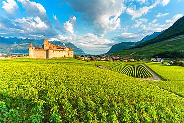 Castle of Aigle set in rolling hills of vineyards, canton of Vaud, Switzerland