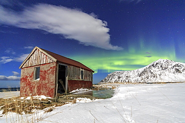 Northern Lights (aurora borealis) over an abandoned log cabin surrounded by snow and ice, Flakstad, Lofoten Islands, Arctic, Northern Norway, Norway, Scandinavia, Europe