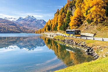 Yellow bus travelling on shores of Lake Silvaplana in autumn, St. Moritz, Engadine, canton of Graubunden, Switzerland, Europe