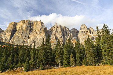 Colorful woods in autumn at Sella Pass, Fassa Valley, Trentino-Alto Adige, Dolomites, Italy, Europe