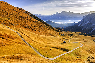 Autumn colors in the valley around the group Forcella de Furcia at sunrise, Funes Valley, South Tyrol, Dolomites, Italy, Europe