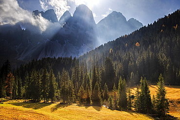 Green meadows and colorful woods in autumn frame the Odle, Malga Zannes, Funes Valley, South Tyrol, Dolomites, Italy, Europe