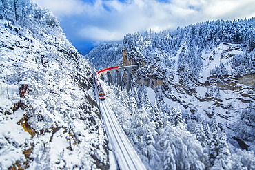 Bernina Express passes through the snowy woods around Filisur, Canton of Grisons (Graubunden), Switzerland, Europe