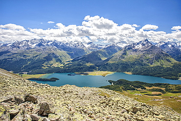 Top view of Lake Sils with snowy peaks in background, Engadine, Canton of Grisons (Graubunden), Switzerland, Europe