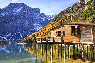 Wooden hut and colourful woods reflected in Lake Braies, Natural Park of Fanes Sennes, Bolzano, Trentino-Alto Adige, Italy, Europe