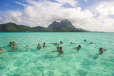Tourists swimming with sting rays, Bora Bora, Society Islands, French Polynesia, Pacific