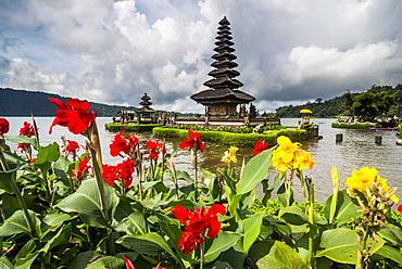 Blooming flowers before the Pura Ulun Danu Bratan temple, Bali, Indonesia, Southeast Asia, Asia