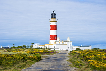 Point of Ayre Lighthouse, Isle of Man, crown dependency of the United Kingdom, Europe