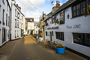 Picturesque harbour town of Ifracombe, North Devon, England, United Kingdom, Europe