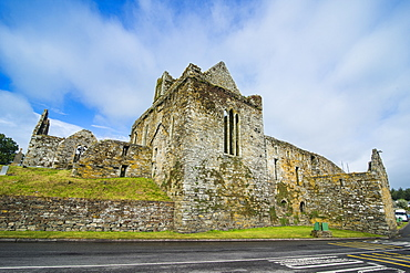 Timoleague Abbey, Timoleague, County Cork, Munster, Republic of Ireland, Europe