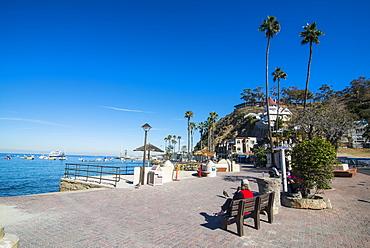 The waterfront of Avalon, Santa Catalina Island, California, United States of America, North America