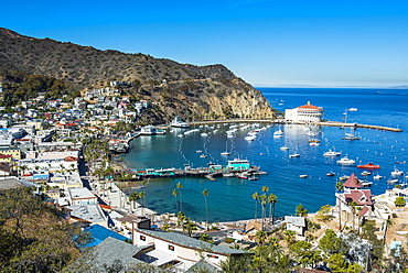 View over Avalon, Santa Catalina Island, California, United States of America, North America