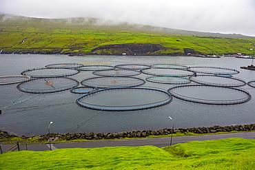 Fish farm in the Faroe Islands, Denmark, Europe