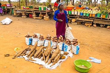 Street market, Malanje province, Angola, Africa