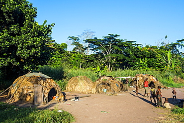 Traditional Baka pygmy village in the Dzanga-Sangha Special Reserve, UNESCO World Heritage Site, Central African Republic, Africa