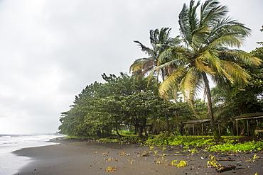 Black volcanic sand on six mile beach near Limbe, southern Cameroon, Africa