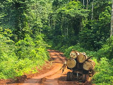 Logging truck in the jungle, Yokadouma, Eastern Cameroon, Africa