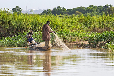 Fishermen in their canoe, Niger river, Niamey, Niger, West Africa, Africa