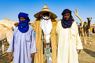Tuaregs at the animal market, Agadez, Niger, West Africa, Africa