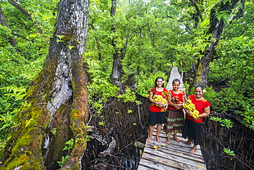 Local girls carrying bananas, Kosrae, Federated States of Micronesia, South Pacific
