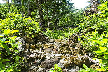 Lelu (Leluh) archaeological site, Kosrae, Federated States of Micronesia, South Pacific