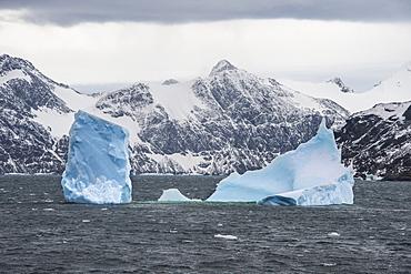Floating iceberg, Elephant Island, South Shetland Islands, Antarctica, Polar Regions