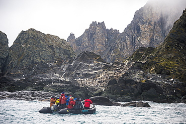 Tourists on a zodiac watching a dolphin colony, Elephant Island, South Shetland Islands, Antarctica, Polar Regions