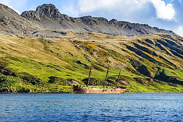 Stranded old whaling boat, Ocean Harbour, South Georgia, Antarctica, Polar Regions