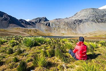 Woman admiring the beautiful scenery of Godthul, South Georgia, Antarctica, Polar Regions