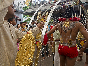 Devotee with body piercings, Thaipusam Hindu Tamil festival celebrated in Little India, Singapore, Southeast Asia, Asia