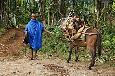 Farmer in the Meket mountains, near the Rift Valley, in Ethiopia, Africa