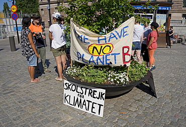 Swedish environmental activists protesting outside the Swedish Parliament about the need for immediate action to combat climate change, Stockholm, Sweden, Scandinavia, Europe