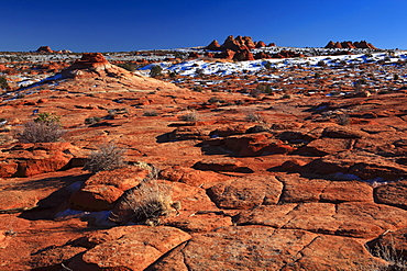 Coyote Buttes North, fragil sandstone formed by wind and water, Paria Wilderness Area, Arizona, United States of America, North America