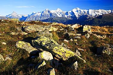 Schweizer Alpen, Aussicht vom Niederhorn, Schreckhorn, 4078 m, Finsteraarhorn, 4274 m, Eiger, 3974 m, Moench, 4099 m, Jungfrau, 4158m, Herbst, Berner Oberland, Bern, Schweiz