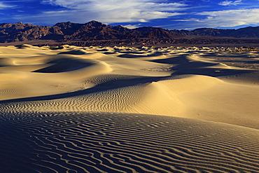 Mesquite flats sand dunes, death valley national park, california, usa