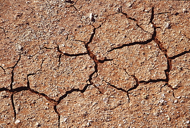 Cracked earth, namibia. Namib desert, dead vlei. Cracks in parched sand